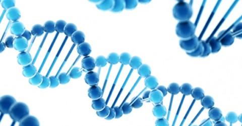 Are Your Genes Hazardous to Your Health?