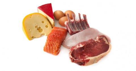 Animal Protein as a Carcinogen