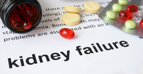Study Looks at Chronic Kidney Disease (CKD) & Diet