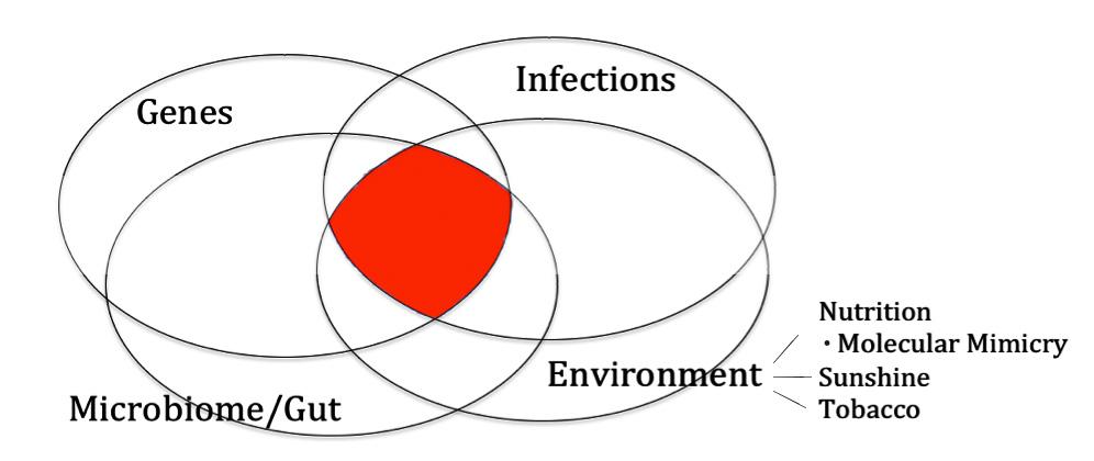 The Autoimmune Formula