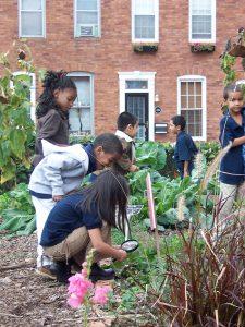 Estudiantes en el jardín de la escuela