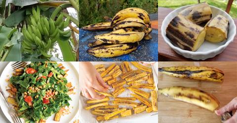 5 Ways to Prepare Ripe Plantains
