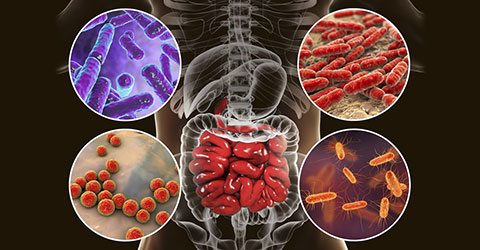 Why Your Microbiome May Be to Blame for Your Bloating - 5 Tips for Gut Balance