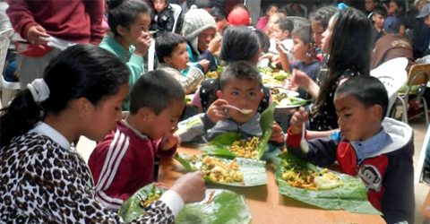 Global Whole Food, Plant-Based Community Kitchens