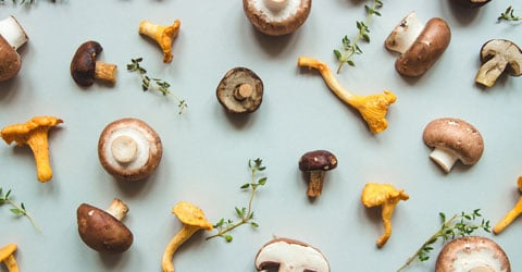 How To Get Your Vitamin D From Mushrooms